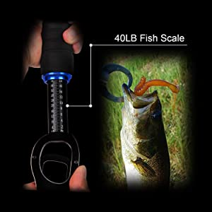 Using Thicker Materials for Durability MollyZillah Fish Scale Remover Stainless Steel Fish Scale Scraper for Fast Scales Peeling Fish Scaler