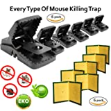 Abaxial [2018 Updated] Mouse Trap 6-Pack + Free Glue Traps Boards 6-Pack - Best Durable Effective Sanitary Sensitive Snap Bait Mousetrap | Safe Sticky Reusabmale | Rodent, Rat, Mice Protects Pets (Color: Black)
