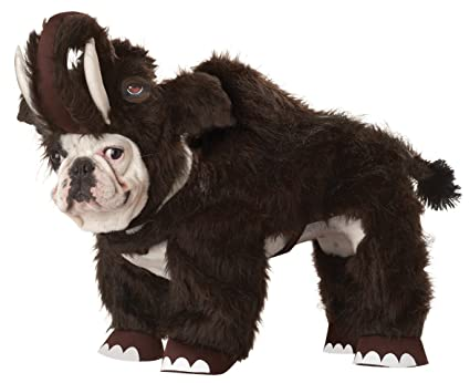 Small Dogs Pets Dog Costume X-small