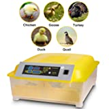Sailnovo Egg Incubator Digital Automatic Incubators for Chicken Duck Goose Quail Turkey Tuttle Birds Fertilized Eggs,Poultry Hatcher Eggs Incubation Tunner (48 Egg Incubator) (Tamaño: 48 Egg Incubator)