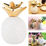 Pineapple Coin Piggy Bank Decorative Ceramic Pineapples Shaped Save Money Cans Cute Money Boxes for Pineapple Theme Party Decor Girls Kid's Children Adults Birthday Gifts (White) (Color: White)