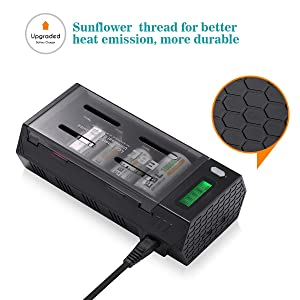 EBL C D Battery Charger Discharger with LCD Display & 2 USB Port for Phone - Ultra Fit AA AAA C D 9V NiMH Rechargeable Batteries