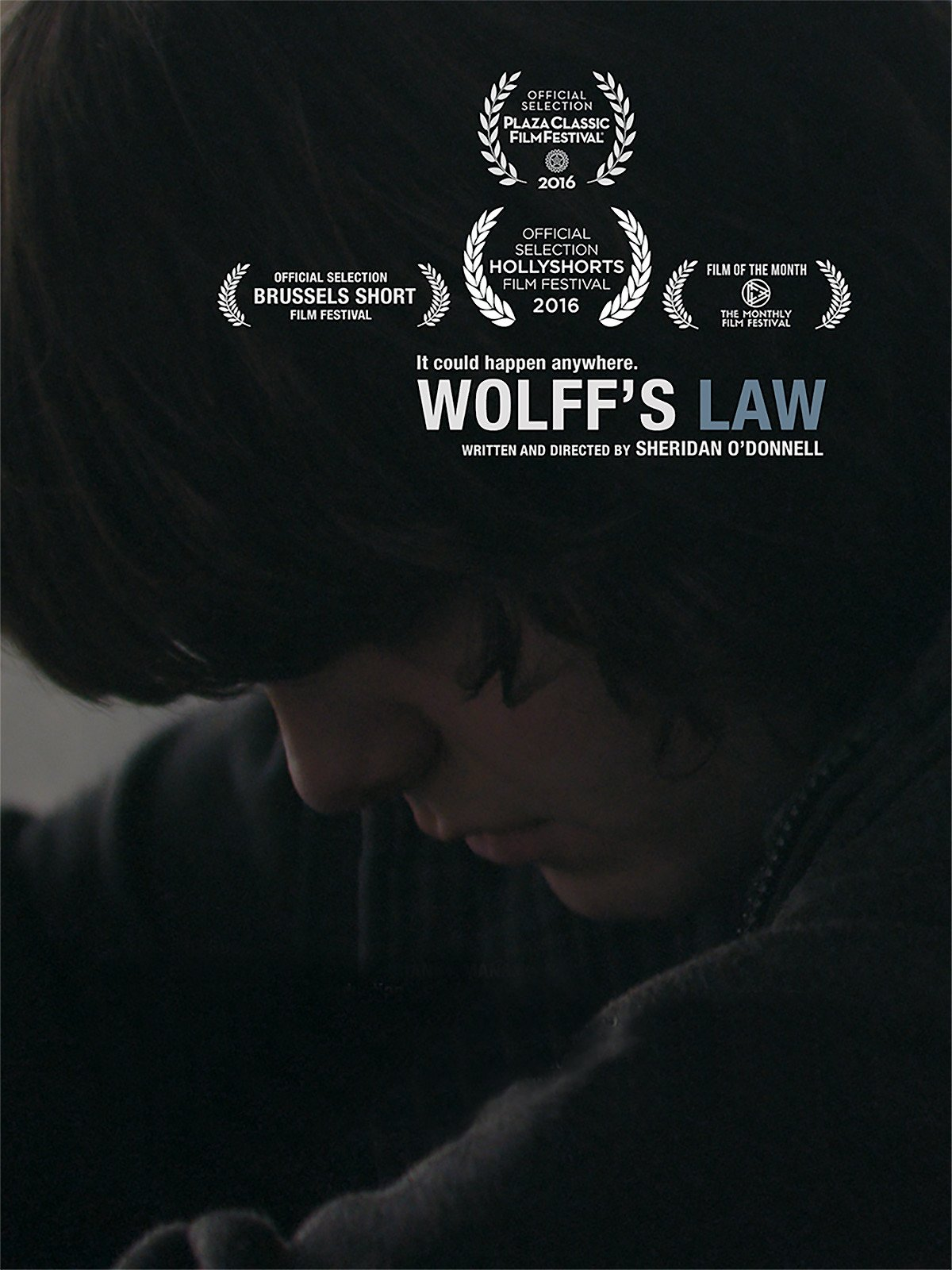 Wolff's Law