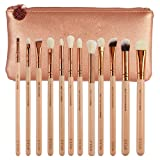 Zoe Complete Face And Eye Makeup Brush Set With Case 8 /12 / 15 Piece Brushes (12PC with Package PINK)