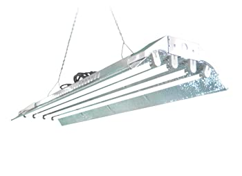T5 Grow Light (4ft 4lamps) DL844s Ho Fluorescent Hydroponic Bloom Veg Daisy Chain with Bulbs