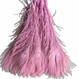 ADAMAI Natural Bleached Dyed Peacock Feather Eyes Tail Decoration 25-30cm Pack of 100 (Pink) (Color: Pink)