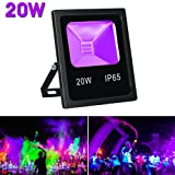 LaluceNatz 20W Outdoor UV Black Light, IP65 Waterproof COB UV Flood Lights for Body Paint, Fluorescent Poster, Glow in the Dark Party (Slim Metal Body)