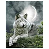 Fipart DIY diamond painting cross stitch craft kit. Wall stickers for living room decoration. Wolf(12X18inch/30X45CM)