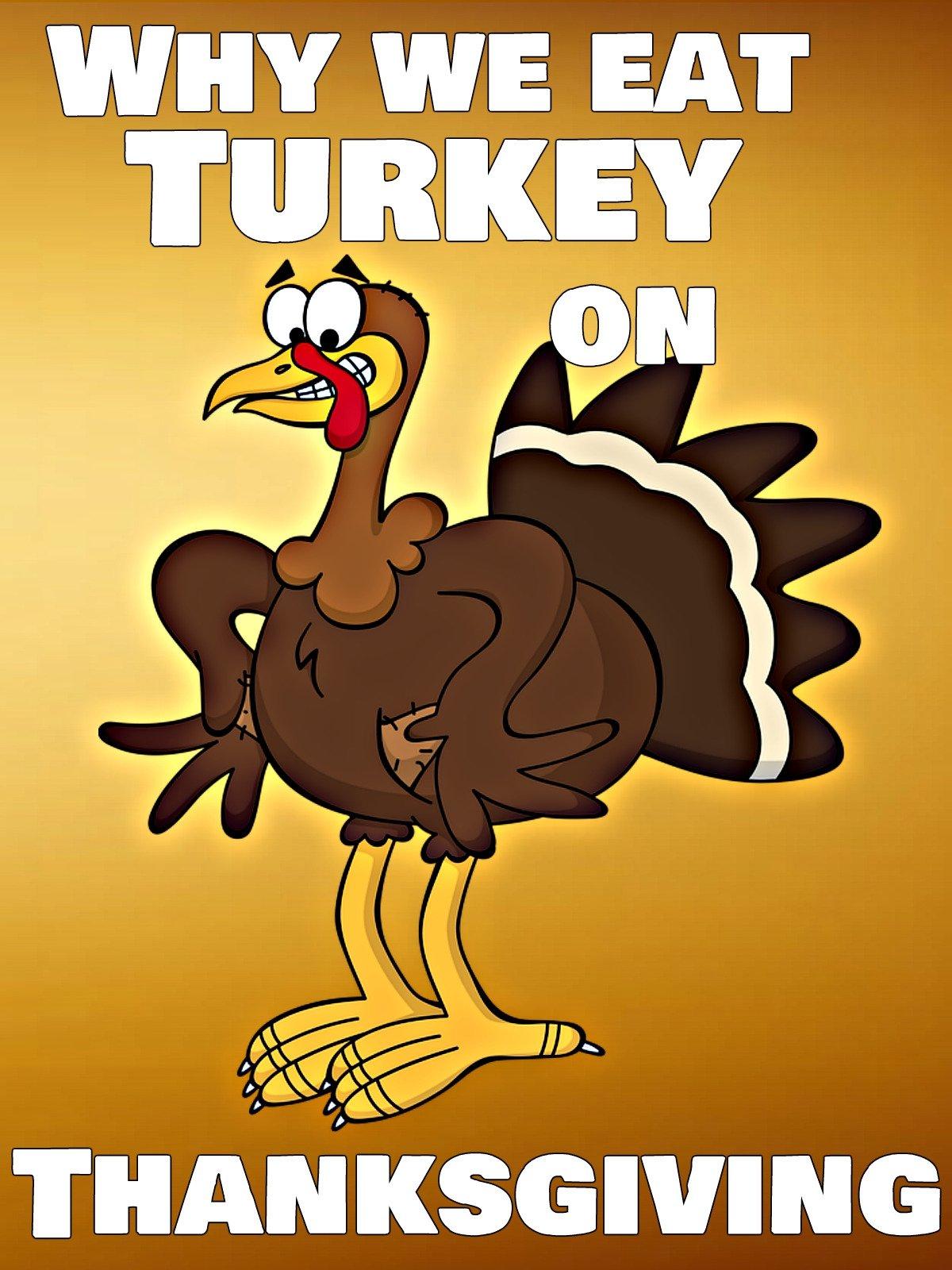 Why We Eat Turkey on Thanksgiving on Amazon Prime Video UK