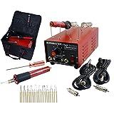 BURNMASTER Eagle 2 Port Wood Burner, 2-Pens, 10-Tips and Bag Set for Wood, Leather & Gourd