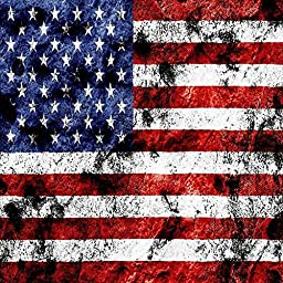 GladsBuy American Flag 10\' x 10\' Digital Printing Photography Backdrop Flag Theme Anti-UV Studio Background YHB-231