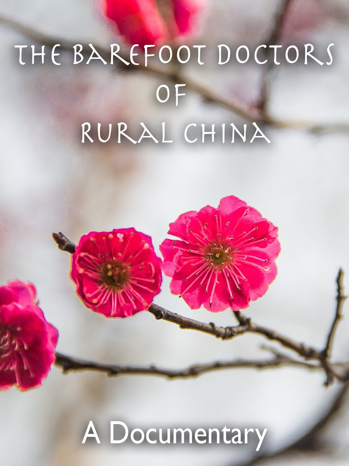 The Barefoot Doctors of Rural China A Documentary