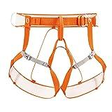 PETZL Altitude Climbing Harness One Color L/XL (Color: Orange, Tamaño: L-XL)