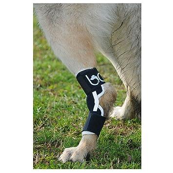 balto orthopaedic braces for animals