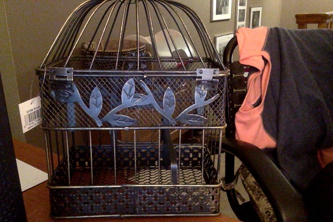 Vintage Bird Cage, Rectangular, 14 in. & 17 in., Black & Gold, Set of 2 1