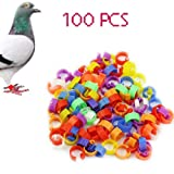 100pcs Bird Rings Leg Bands for Pigeon Parrot Finch Canary Hatch Poultry Rings (Color: color mixing)