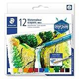 STAEDTLER 223 C12 Watercolour Karat Aquarell Crayons - Multi-Colour (Pack of 12) (Color: Multi-colour)