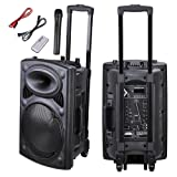 AW Portable 1200W Active PA Speaker Mic Guitar AMP Bluetooth USB SD LCD FM Remote w/Wireless Microphone (Color: 1200W)