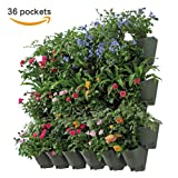 Worth Garden SELF WATERING VERTICAL Wall Hangers with Pots - Wall Plant Hangers - Each Wall Mounted Hanging Pot has 3 Pockets - 36 Total Pockets in this Set - Outdoor Self Watering Planter Set