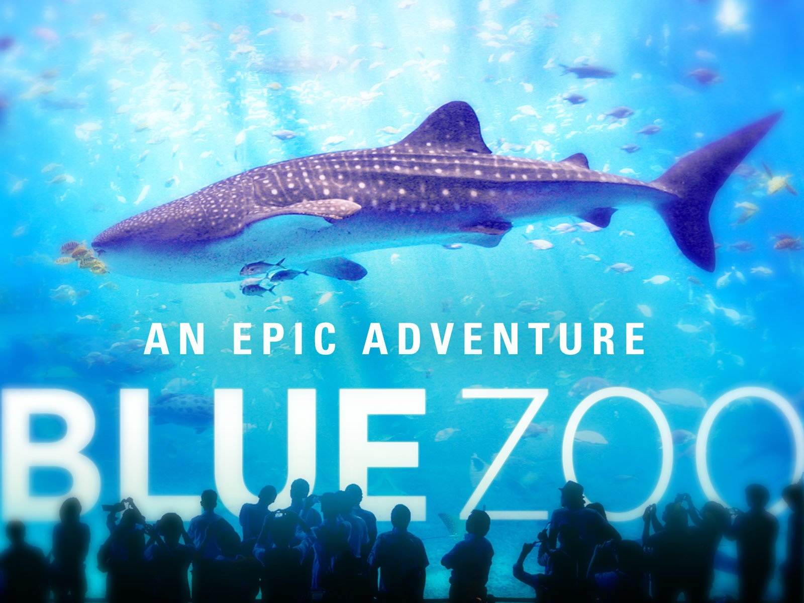 Blue Zoo - Season 1