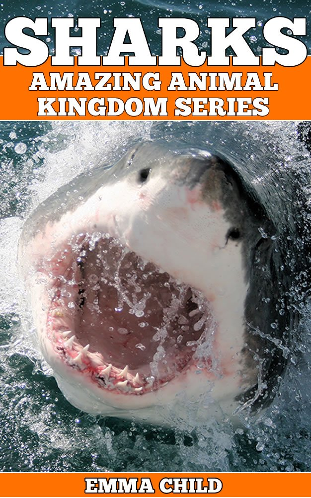 SHARKS-Fun-Facts-and-Amazing-Photos-of-Animals-in-Nature-Amazing-Animal-Kingdom-Series-Childrens-Books