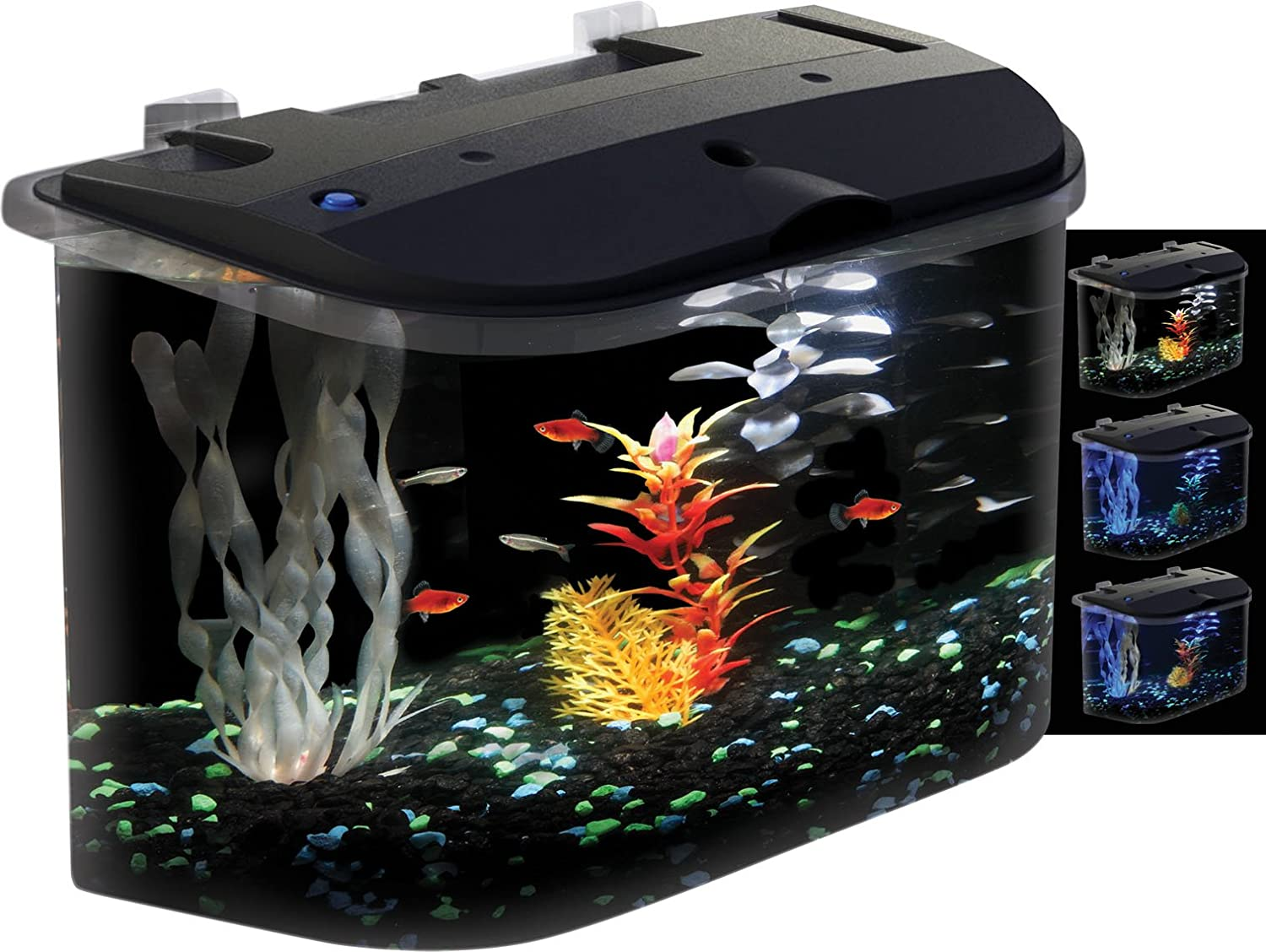 Fish for aquarium online - Buy Aquarius Aq15005 Aquarius 5 Rounded 5 Gallon Aquarium Kit Online At Low Prices In India Amazon In