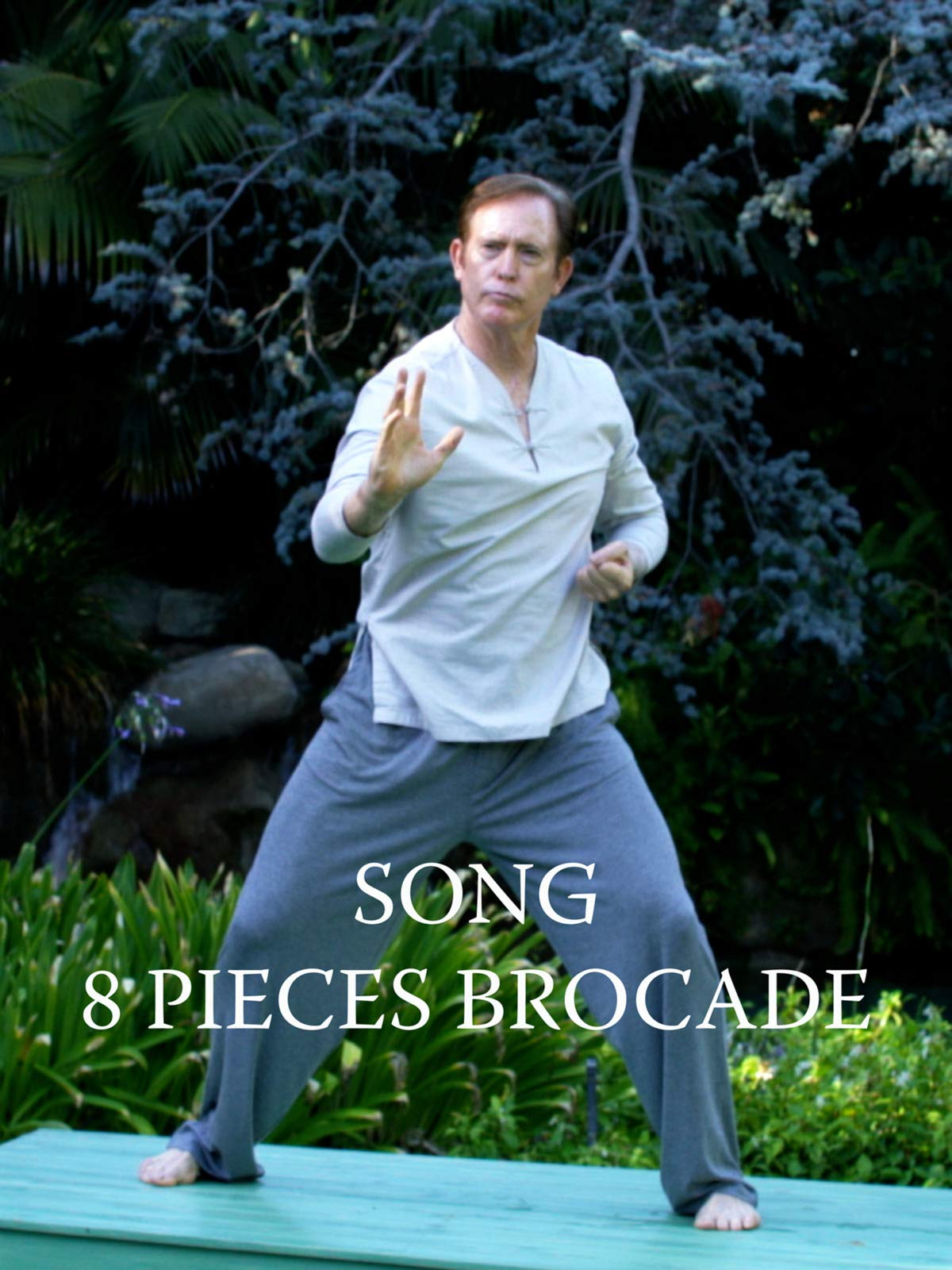 8 Pieces Brocade - Qigong