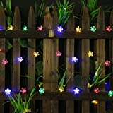 All Star 50 LED Solar-Powered Flower Bulbs Outdoor String Lights, Multi Color (Color: Multicolor)