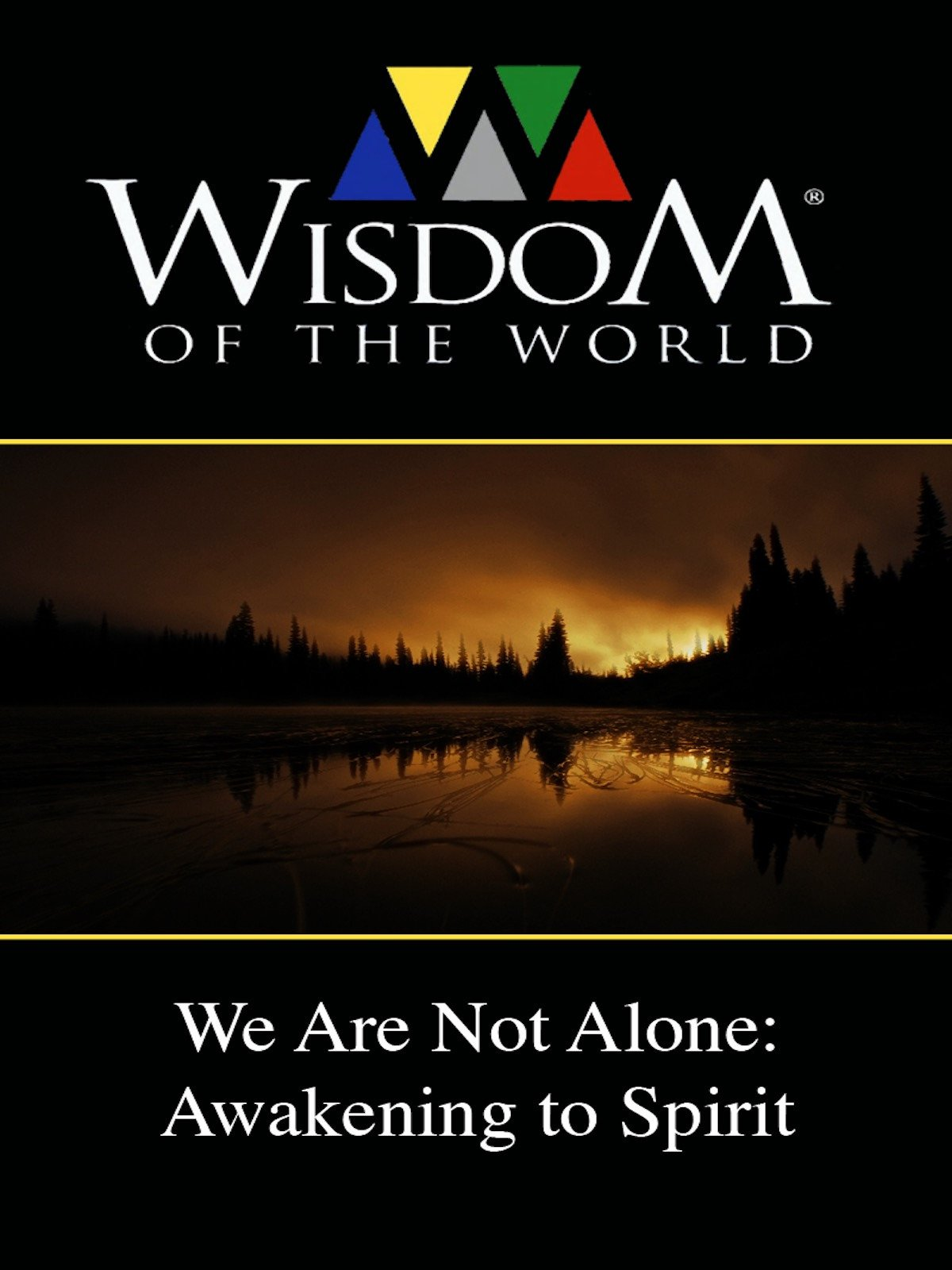 We Are Not Alone: Awakening to Spirit