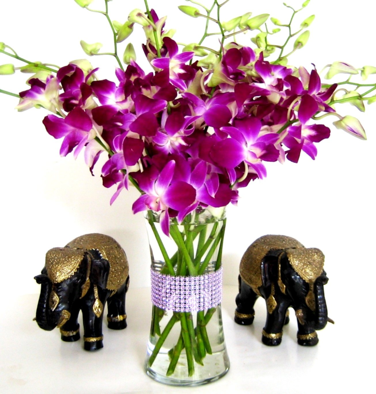 Fresh Purple Dendrobium Orchids with Vase