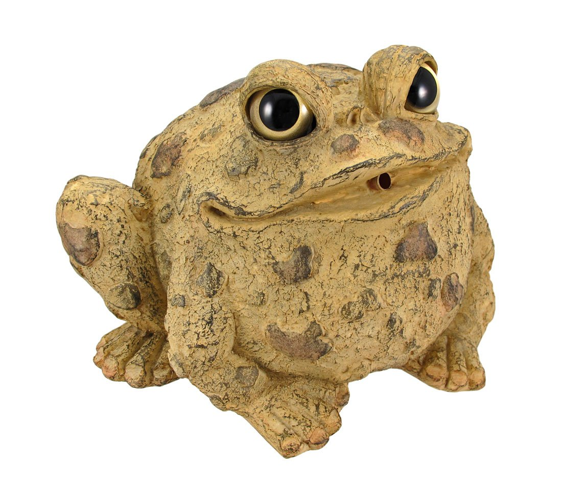 Toad Hollow Natural Frog Garden Pond Fountain Spitter
