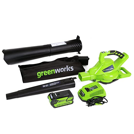 GreenWorks 24322 Leaf Blower Review