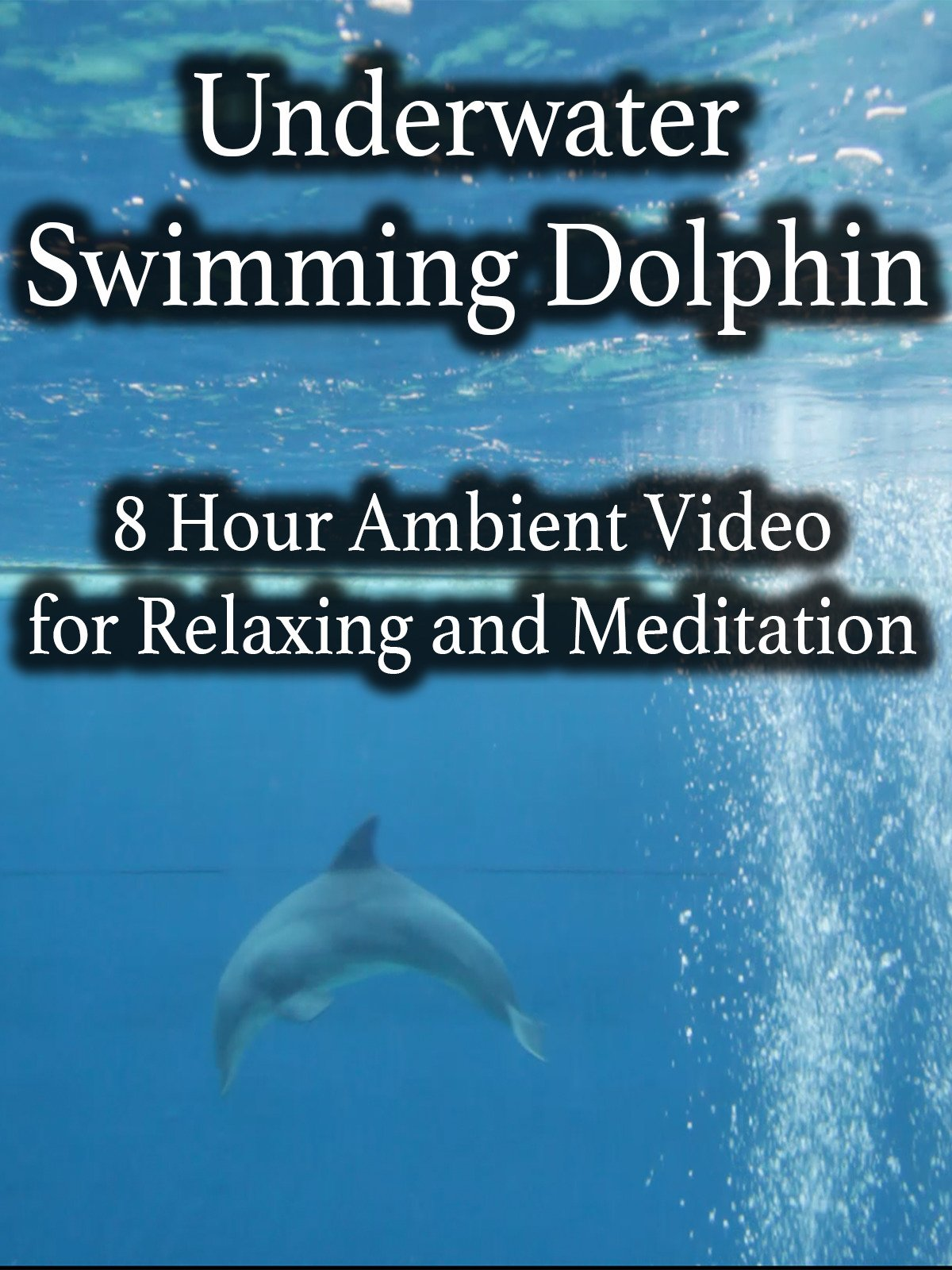 Underwater Swimming Dolphin 8 Hour Ambient Video for Relaxing and Meditation