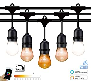Fule Smart Outdoor LED String Lights 48FT,Weatherproof dimmable Outdoor Lights with WiFi Control iOS & Android (Compatible with Amazon Alexa),24 Hanging Sockets, Plastic Vantage Bulbs (Color: CCT Changing, Tamaño: 48FT)