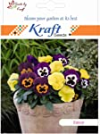 Kraft Seeds Pansy Hybrid Mix Seeds by Kraft Seeds