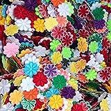 Butie.Dozens of Options. Flower Random 100pcs Embroidered Patch Sew On/Iron On Patch Applique Clothes Dress Plant Hat Jeans Sewing Flowers Applique DIY Accessory (100pcs-RF-47) (Color: 100pcs-rf-47)