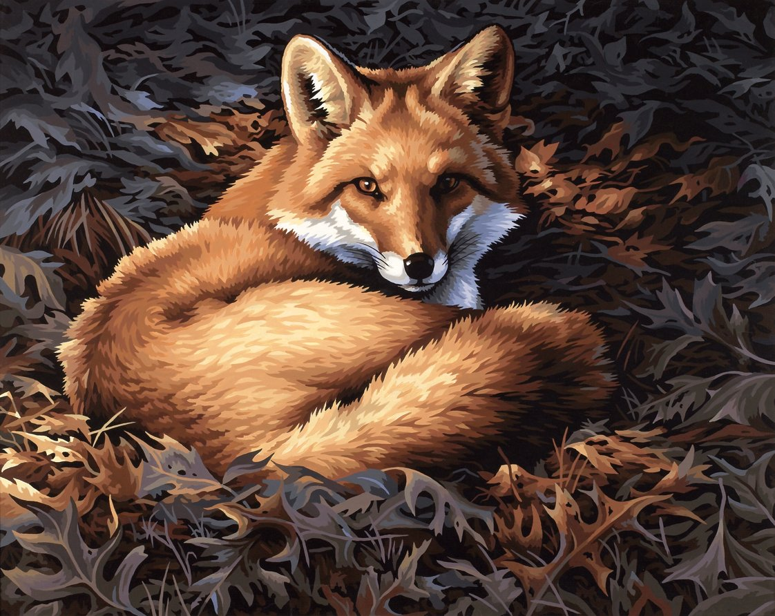 20x16 Paintworks Paint By Number, Sunlit Fox
