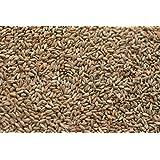 Rye Malt (5 lb) by Briess (Color: Brown, Tamaño: 5 lb)