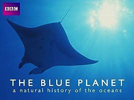 Blue Planet - Seas of Life