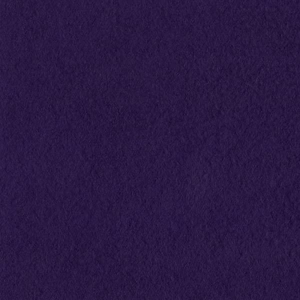 Bazzill Basics 19-6134 Prismatic Cardstock, Classic Purple, 25 Sheet Pack, 8.5 x 11 Inches