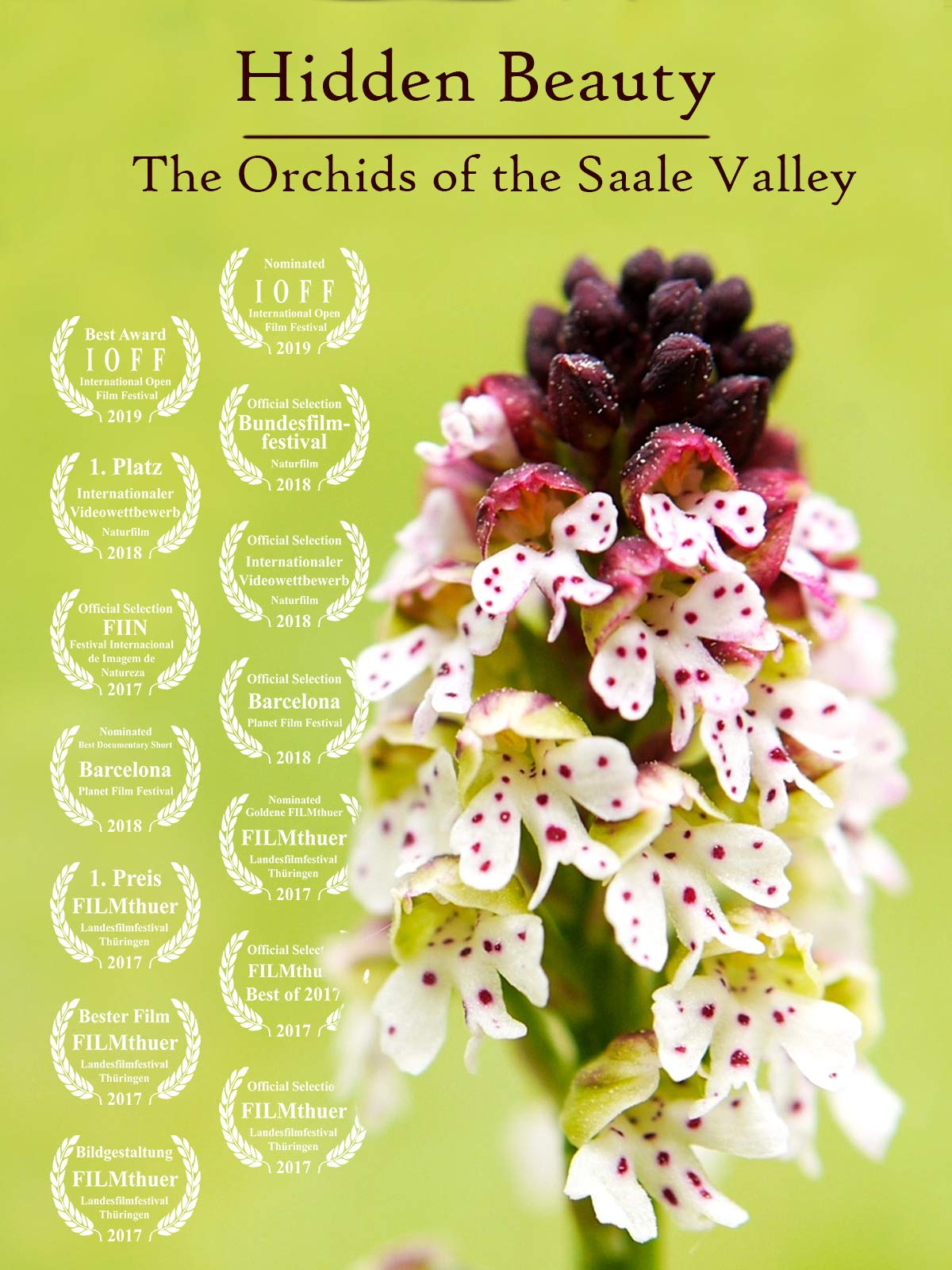 Hidden Beauty - The Orchids of the Saale Valley on Amazon Prime Video UK
