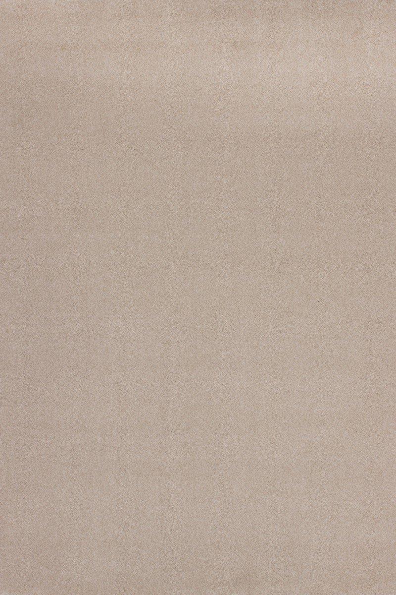 Cuba Basic 510 Elfenbein Teppich Teppiche Modern Design, Größe:120cm x 170cm bestellen