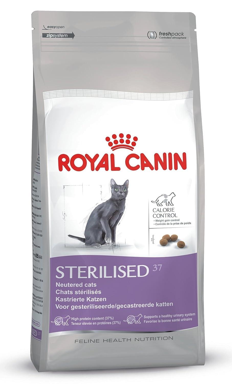 hochwertiges katzenfutter kaufen info royal canin. Black Bedroom Furniture Sets. Home Design Ideas