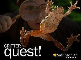 Critter Quest Season 1