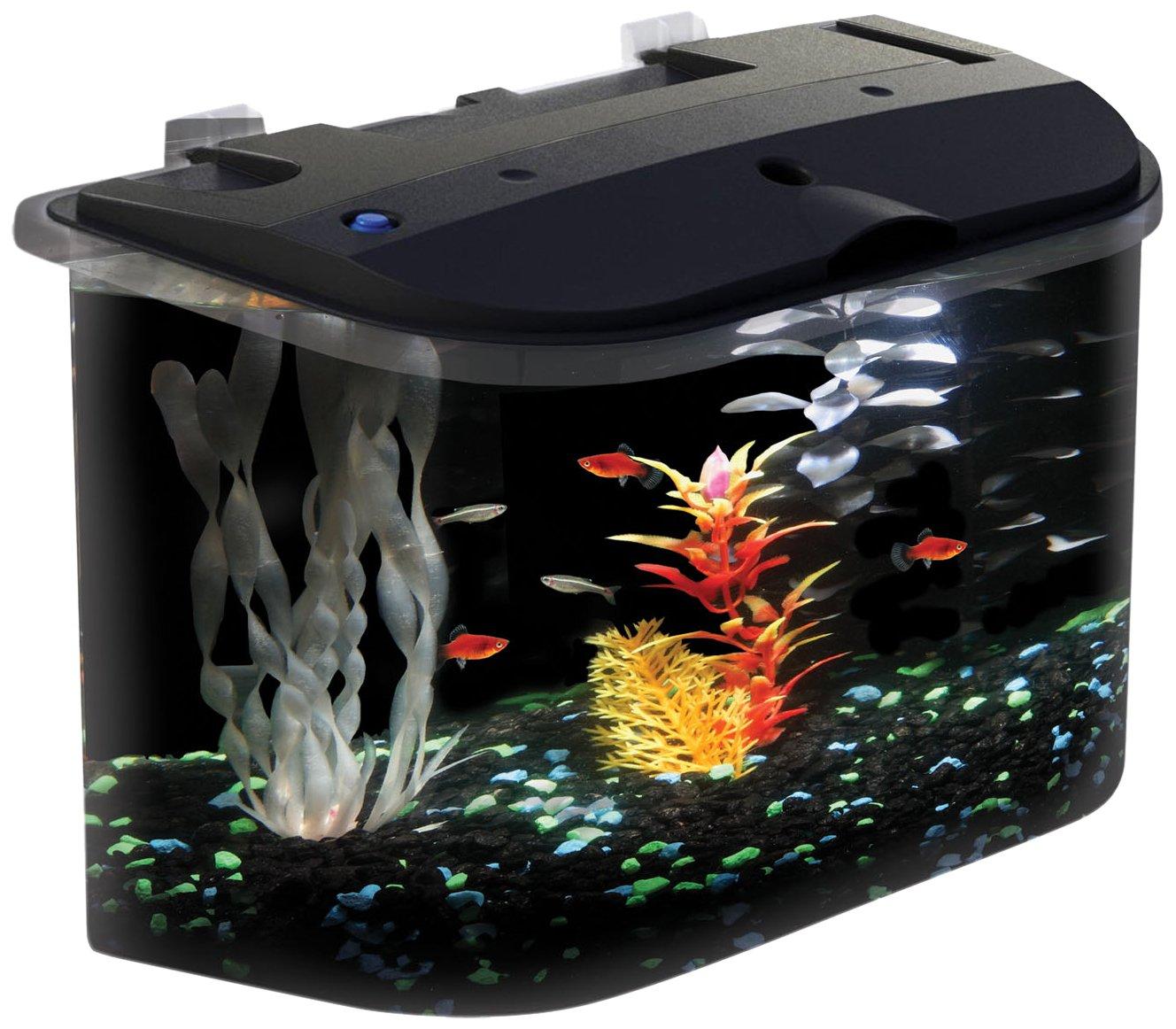 Aquarius aq15005 aquarius 5 rounded 5 gallon aquarium kit for 30 gallon fish tank kit