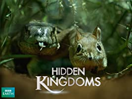 Mini Monsters aka Hidden Kingdoms