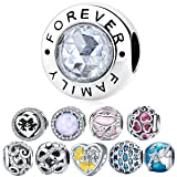 WOSTU 925 Sterling Silver Family Forever Bead Charms fit Charm Bracelets Cubic Zirconia Pendant Charms (Color: Forever Family-XCHS378)