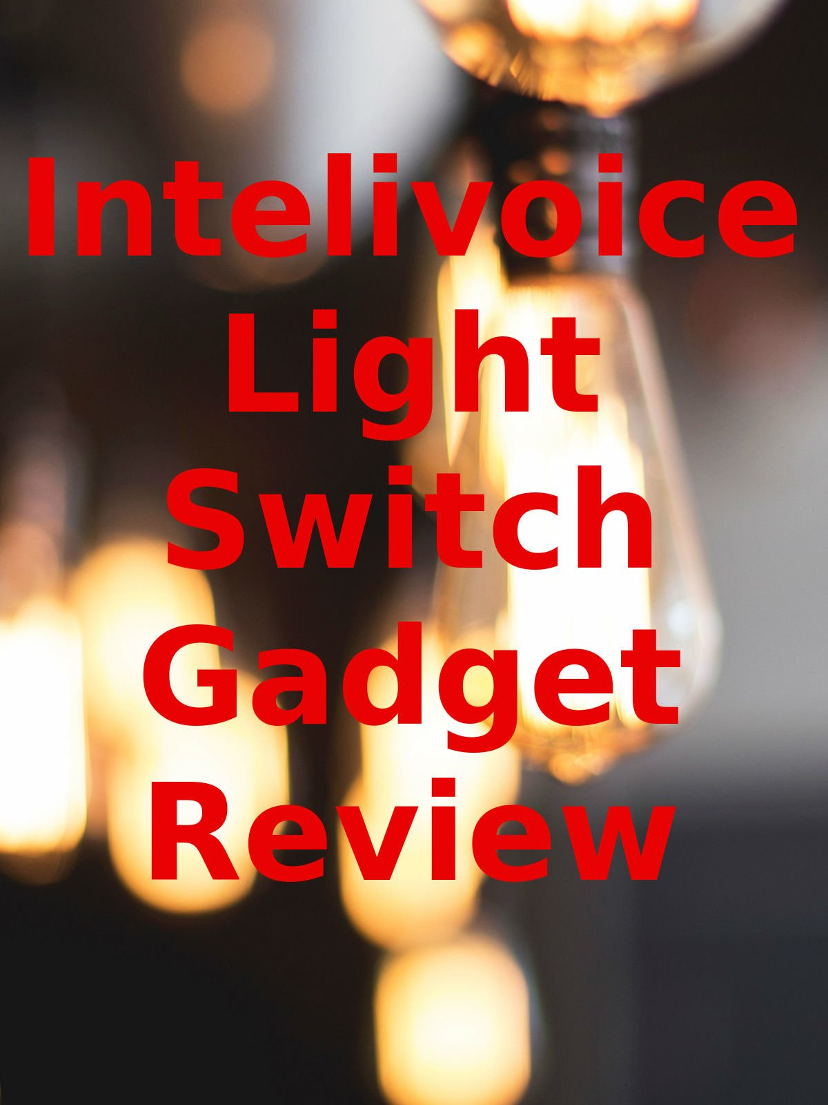 Review: Intelivoice Light Switch Gadget Review