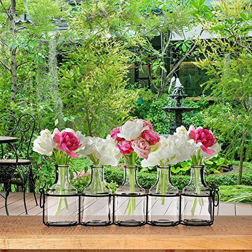 Set of 5 Clear Glass Mini Vases in Black Metal Rack, 5-Inches, Decorative Centerpiece for Flower Arrangements 6