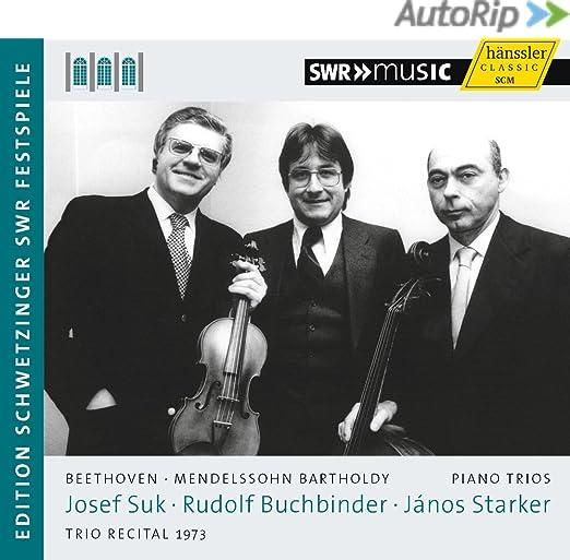 Mendelssohn: Musique de chambre (excluant les quatuors) 71Vvozn4Q0L._SX522_PJautoripRedesignedBadge,TopRight,0,-35_OU11__